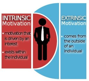Extrinsic and Intrinsic Motivation