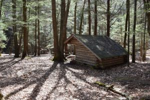 Moss Hill Lean-to (M13, CH1)
