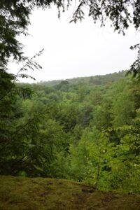Rain at overlook on Mitchellsville Creek