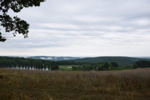 View from bench shelter