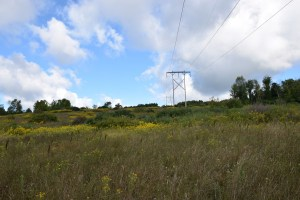 Power line right-of-way