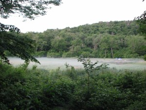 Fog blankets the field in front of Beaver Meadow Lean-to.