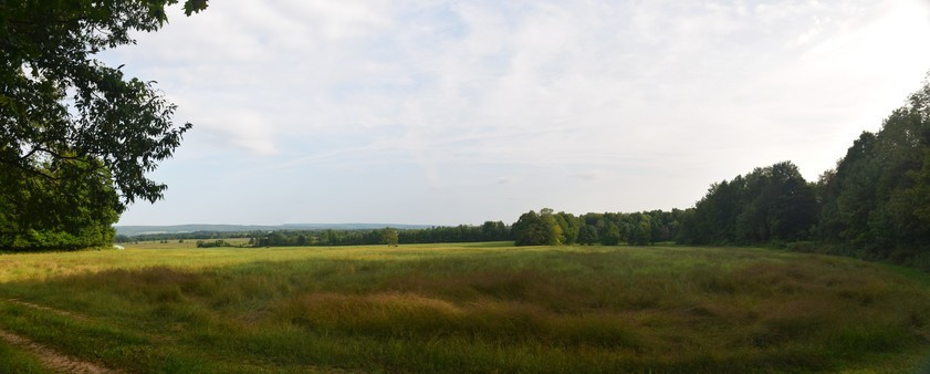 Looking across a field west of Camp Rd