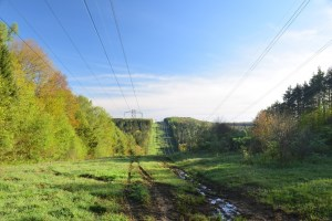 Looking north on a power line right-of-way south of Bear Creek Rd