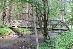 Footbridge over a stream east of W. Branch Bucktooth Hollow Rd