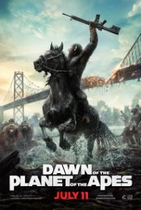 DOTPOTA poster