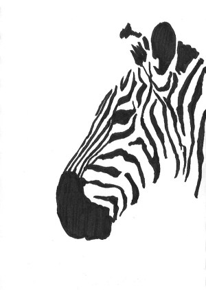 pen sketches marker sketch drawings drawing zebra felt easy animal paintingvalley explore hulme scott seemed subject based any