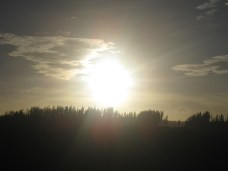 Sunrise at Henty Dunes