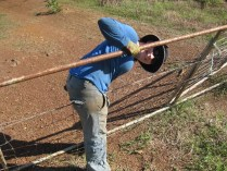 Fence clambering