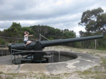 Cannon fun :-)