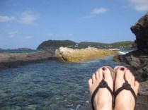Seal Rocks Feet