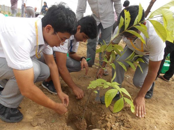 Green Warriors for planting Aravalli native species at Bundh (3)