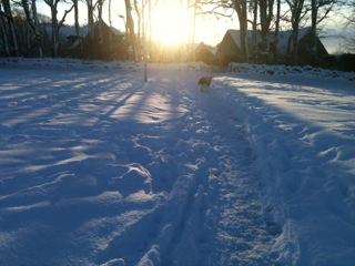Snow – Sensible or Over-Protective Parent?