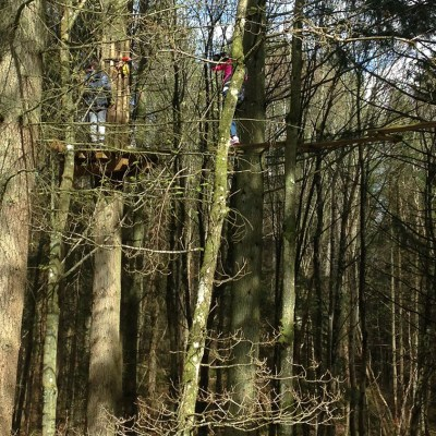 Our Go Ape Experience
