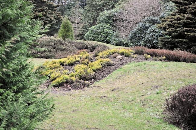 Hazlehead Park 3