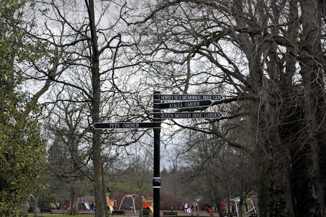 Hazlehead Park 4