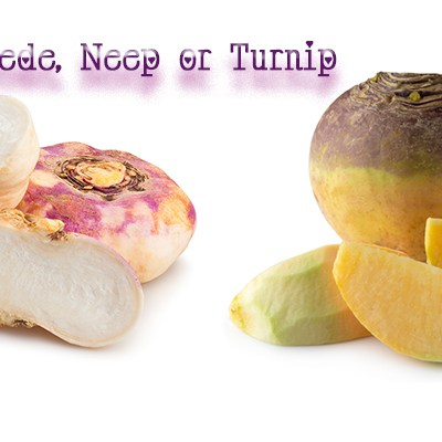 What is the difference between Swede, Neeps and Turnip