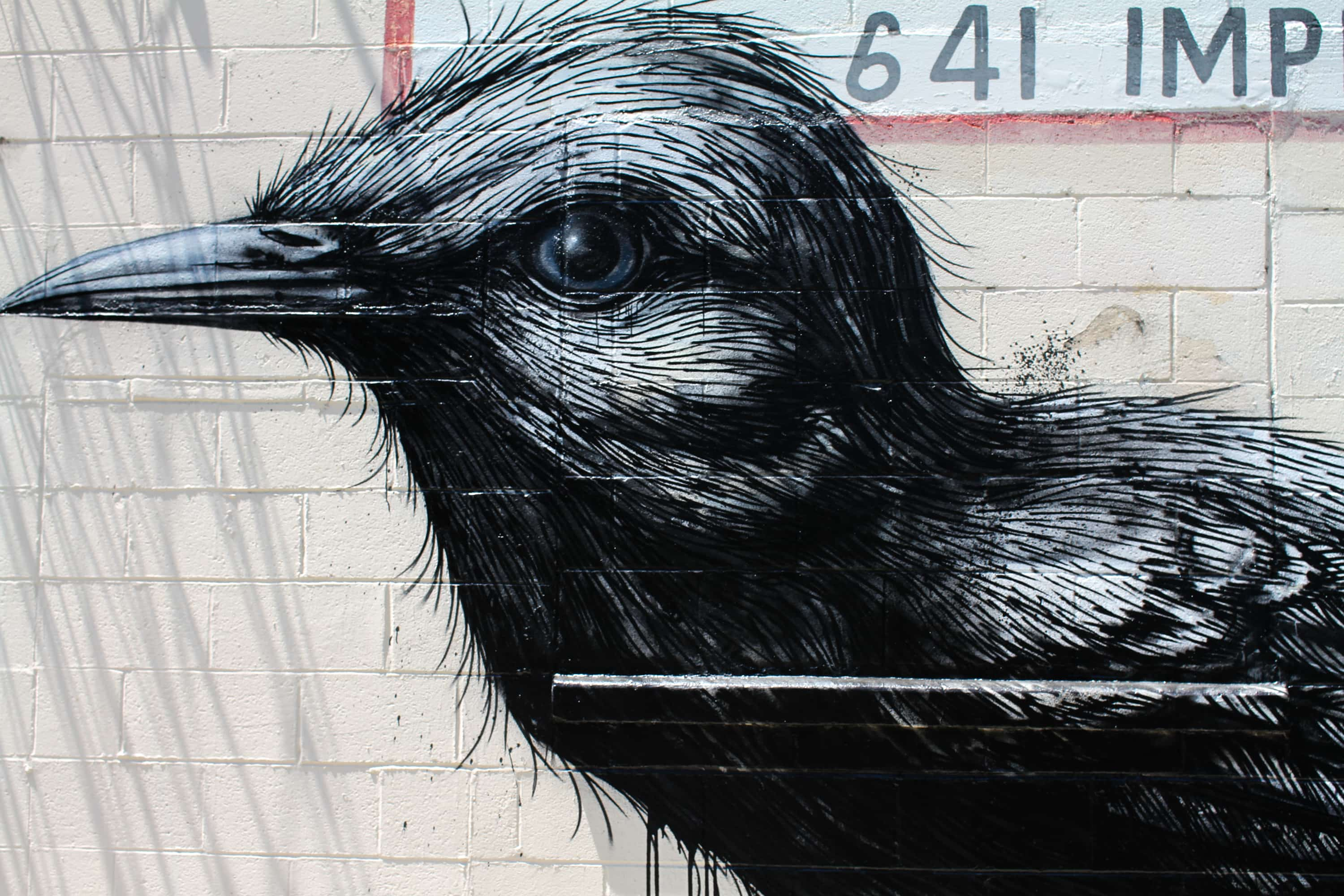 LA Freewalls ROA bird