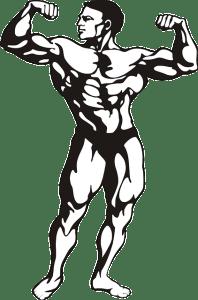 bodybuilder-146791_640
