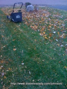 Picture of my lawn partially mowed