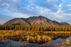 Denali Highway Landscape photo tour