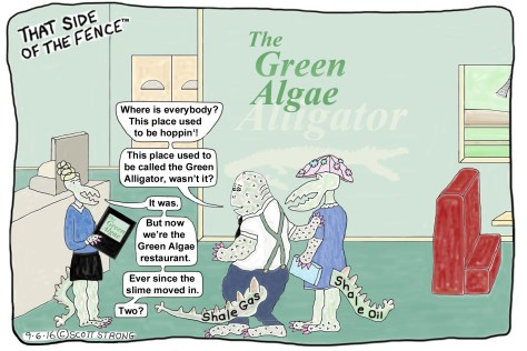 The Green Algae Restaurant.jpg