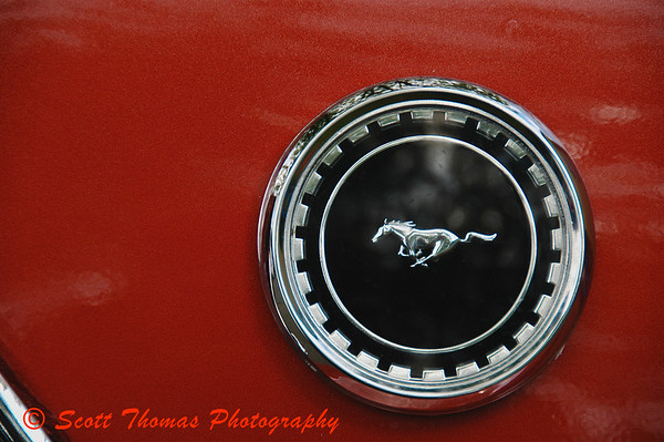 The famous running Mustang logo from a classic 1969 Ford Mustang muscle car at the Syracuse Nationals Hot Rod Show.