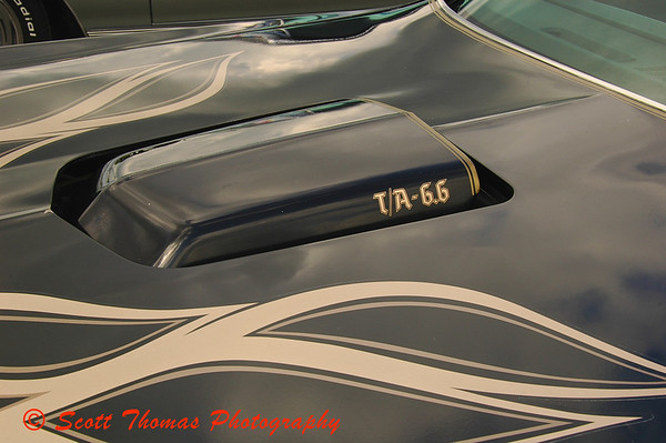 Muscle cars from the 1970s are a favorite of mine like this shaker hood from a 1977 Pontiac Trans Am Black Bird.  Click photo to see the entire car.