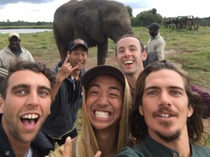 While on the safari we also got to walk with elephants.