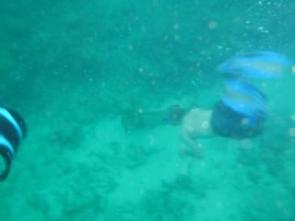 Myself diving down to the mermaid statue.