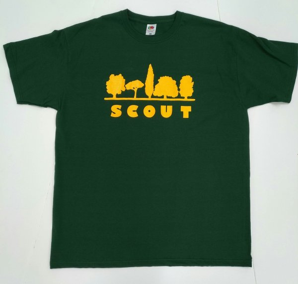 SCOUT VERDE scaled