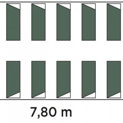 pianta montana 39