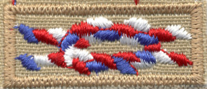 Image result for eagle knot