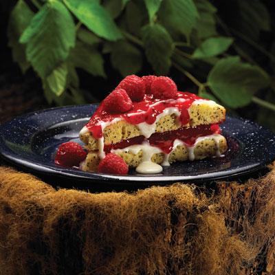Dutch Treat Poppyberry Cake