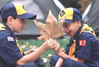Image result for scouts with special needs