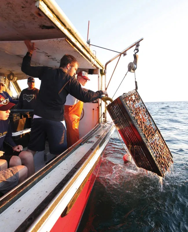 Cape Cod Maritime Adventure Trek