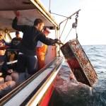 Cape Cod Maritime Adventure Treks