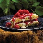 Dutch Treat Poppyberry Cake