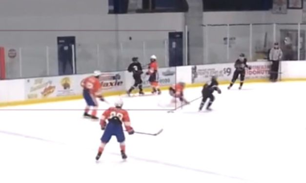 Youth Hockey Baseball-Swing Stick Assault