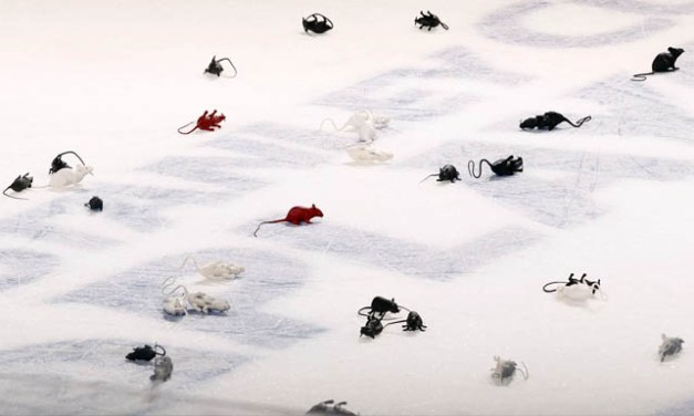 Objects Thrown On The Ice?  Yeah, That's a Penalty.