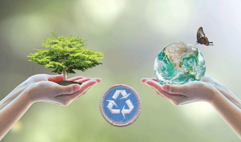 Environmental Science Merit Badge Guide