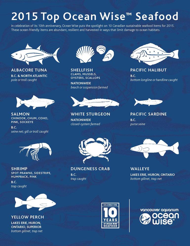 OceanWise_Top10SeafoodF