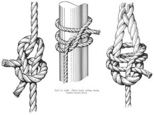 We've Moved!: Essential Knot Books
