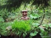 Ewe Gardens, Co. Cork