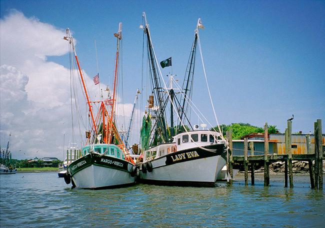 Shem Creek Seafood Market
