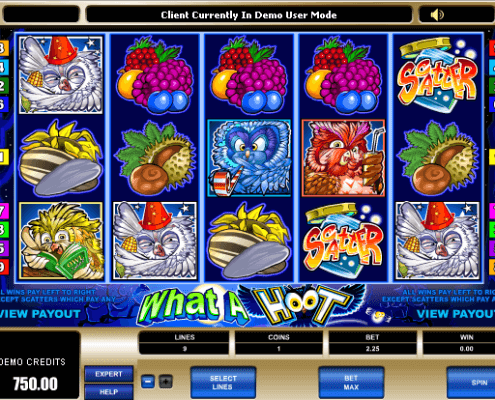 SCR888 Download Have a Party With Owl What a Hoot Slot