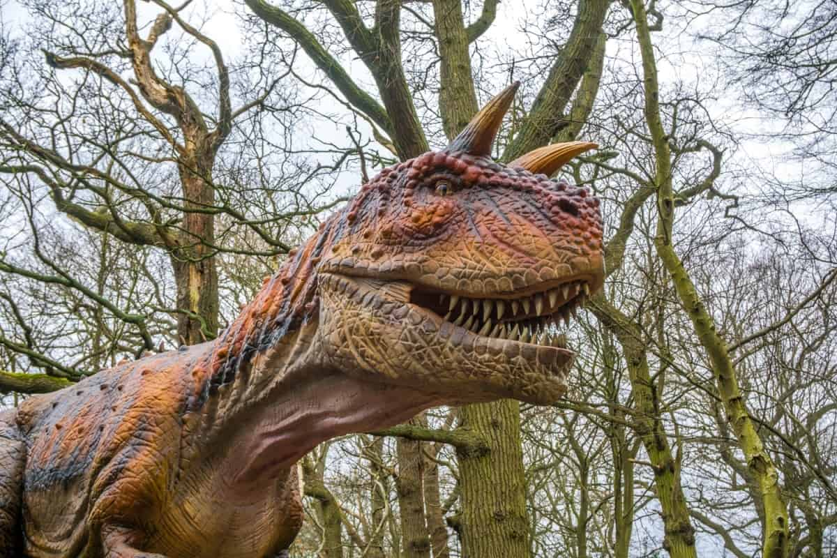 world-of-dinosaurs-paradise-wildlife-park