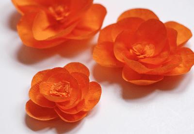 Tutorial crepe paper flowers scrap booking mightylinksfo