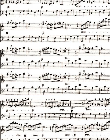 Essay on music