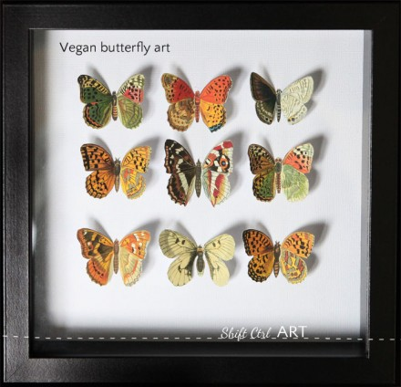Vegan-butterfly-framed-art-paper-craft